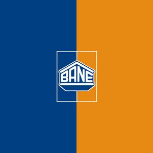 bane logo